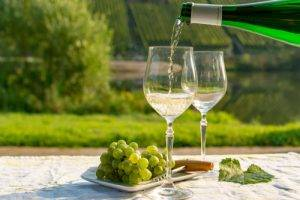 About Riesling Wine